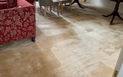 Carpet & Upholstery Cleaning in Cheltenham