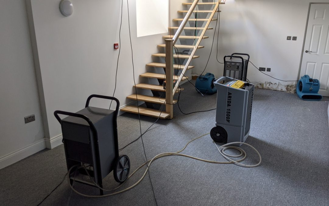 Flood restoration in a commercial office & a student house